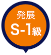 発展S-1級