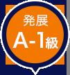 発展A-1級